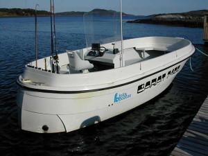 carratbåt 740 diesel